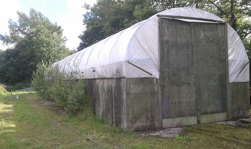 Appleby Edibles Polytunnel