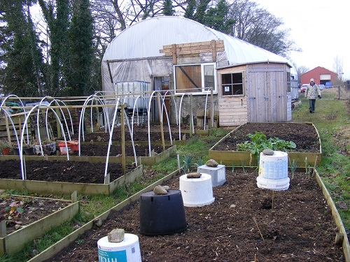 Appleby Edibles Polytunnel outside planters