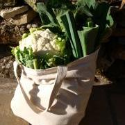 VistaVeg bag 2011